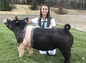 Jake Brown showing off pig for Mid-State fair livestock auction